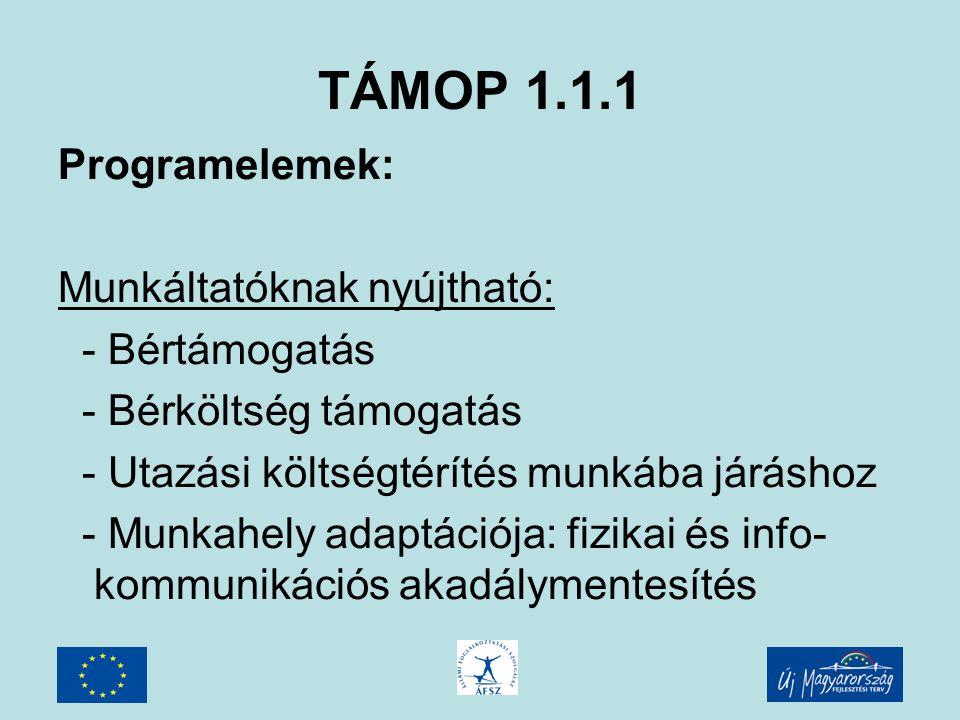 TÁMOP 1.1.1 Programelemek: Munkáltatóknak nyújtható: - Bértámogatás - Bérköltség támogatás - Utazási költségtérítés munkába járáshoz - Munkahely adaptációja: fizikai és info- kommunikációs akadálymentesítés