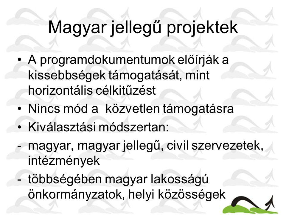 Magyar jellegű projektek A programdokumentumok előírják a kissebbségek támogatását, mint horizontális célkitűzést Nincs mód a közvetlen támogatásra Kiválasztási módszertan: -magyar, magyar jellegű, civil szervezetek, intézmények -többségében magyar lakosságú önkormányzatok, helyi közösségek