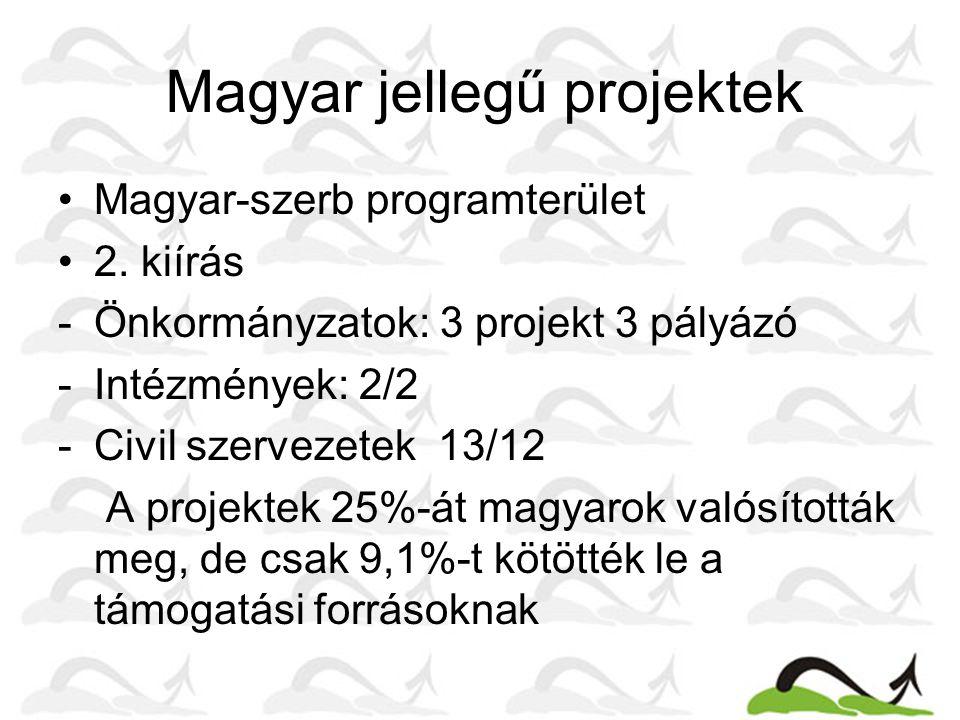 Magyar jellegű projektek Magyar-szerb programterület 2. kiírás -Önkormányzatok: 3 projekt 3 pályázó -Intézmények: 2/2 -Civil szervezetek 13/12 A proje