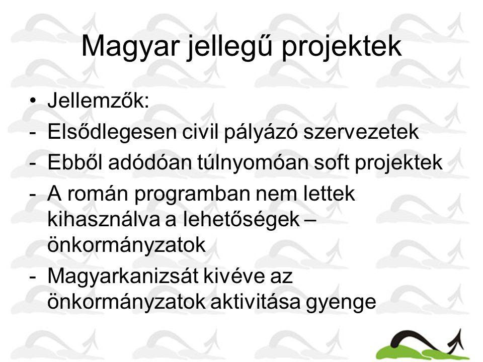 Magyar jellegű projektek Jellemzők: -Elsődlegesen civil pályázó szervezetek -Ebből adódóan túlnyomóan soft projektek -A román programban nem lettek kihasználva a lehetőségek – önkormányzatok -Magyarkanizsát kivéve az önkormányzatok aktivitása gyenge