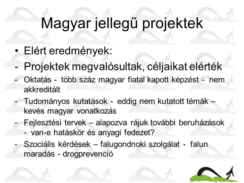Magyar jellegű projektek Elért eredmények: -Projektek megvalósultak, céljaikat elérték -Oktatás - több száz magyar fiatal kapott képzést - nem akkreditált -Tudományos kutatások - eddig nem kutatott témák – kevés magyar vonatkozás -Fejlesztési tervek – alapozva rájuk további beruházások - van-e hatáskör és anyagi fedezet.