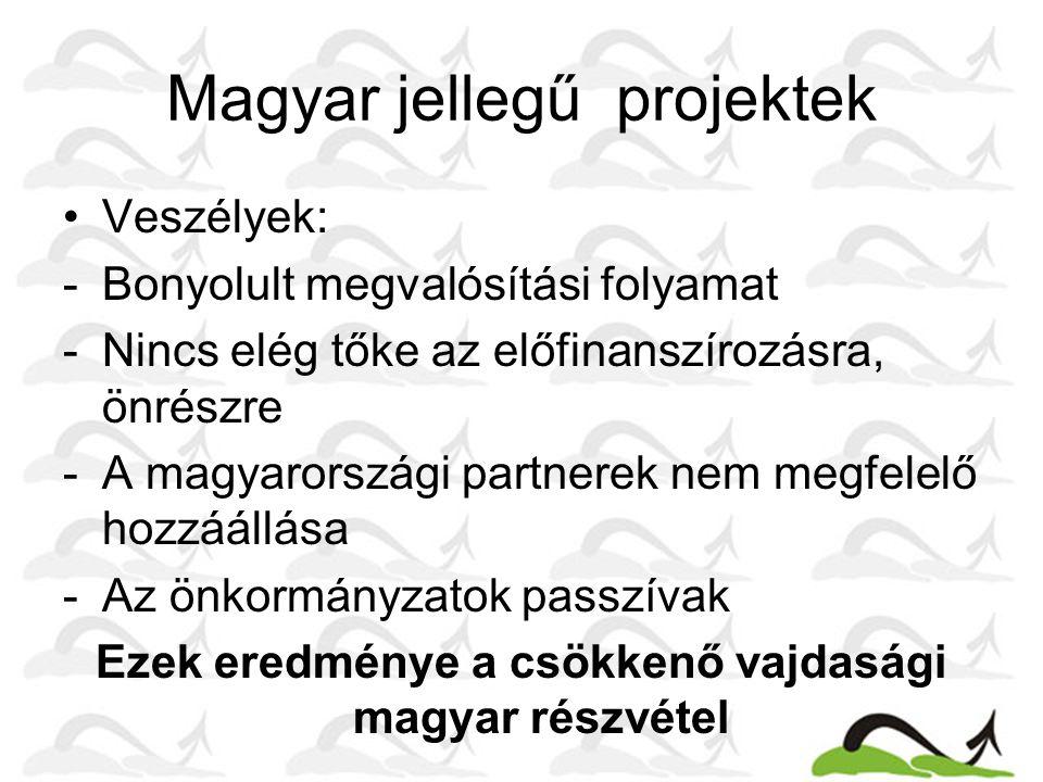 Magyar jellegű projektek Veszélyek: -Bonyolult megvalósítási folyamat -Nincs elég tőke az előfinanszírozásra, önrészre -A magyarországi partnerek nem megfelelő hozzáállása -Az önkormányzatok passzívak Ezek eredménye a csökkenő vajdasági magyar részvétel