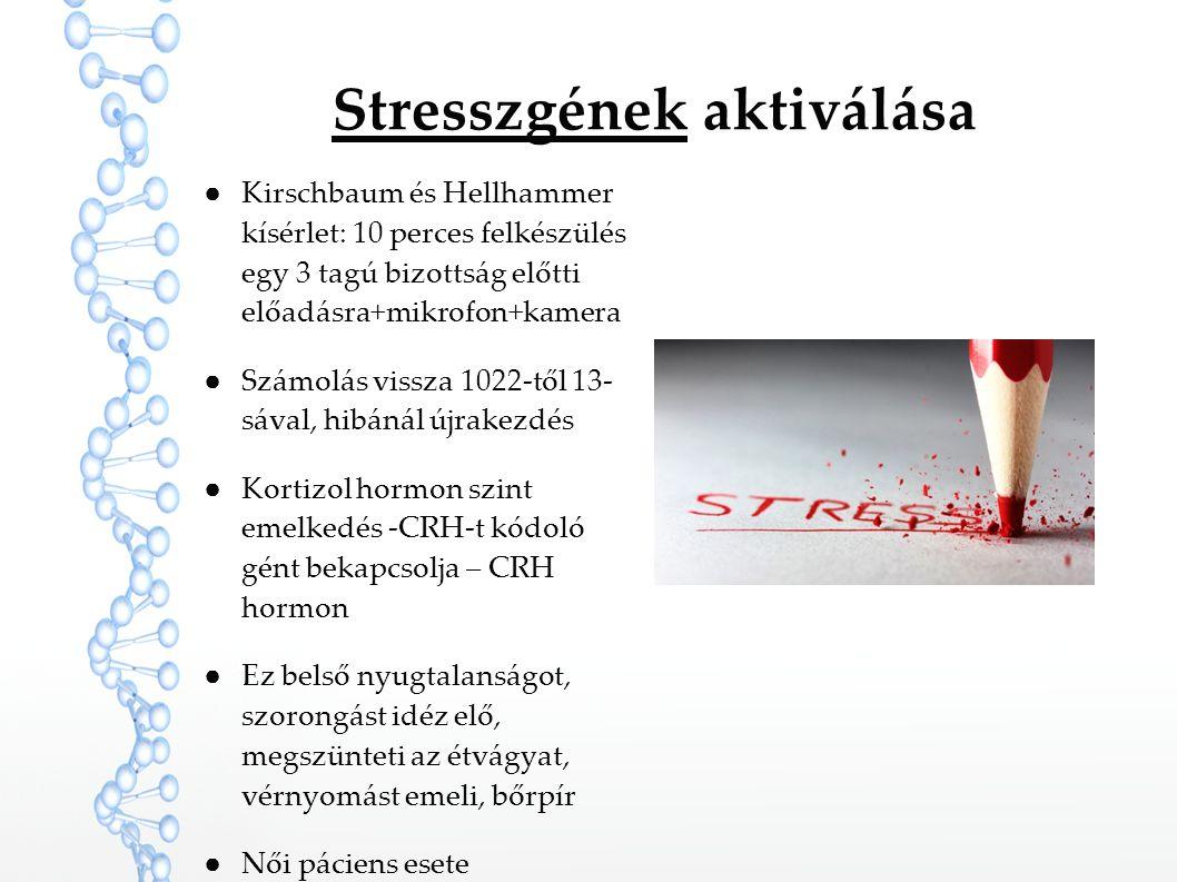 Stresszgének aktiválása ●Kirschbaum és Hellhammer kísérlet: 10 perces felkészülés egy 3 tagú bizottság előtti előadásra+mikrofon+kamera ●Számolás viss