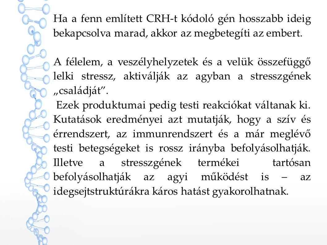 Ha a fenn említett CRH-t kódoló gén hosszabb ideig bekapcsolva marad, akkor az megbetegíti az embert. A félelem, a veszélyhelyzetek és a velük összefü