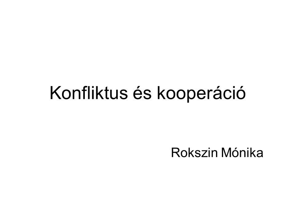 Konfliktus és kooperáció Rokszin Mónika