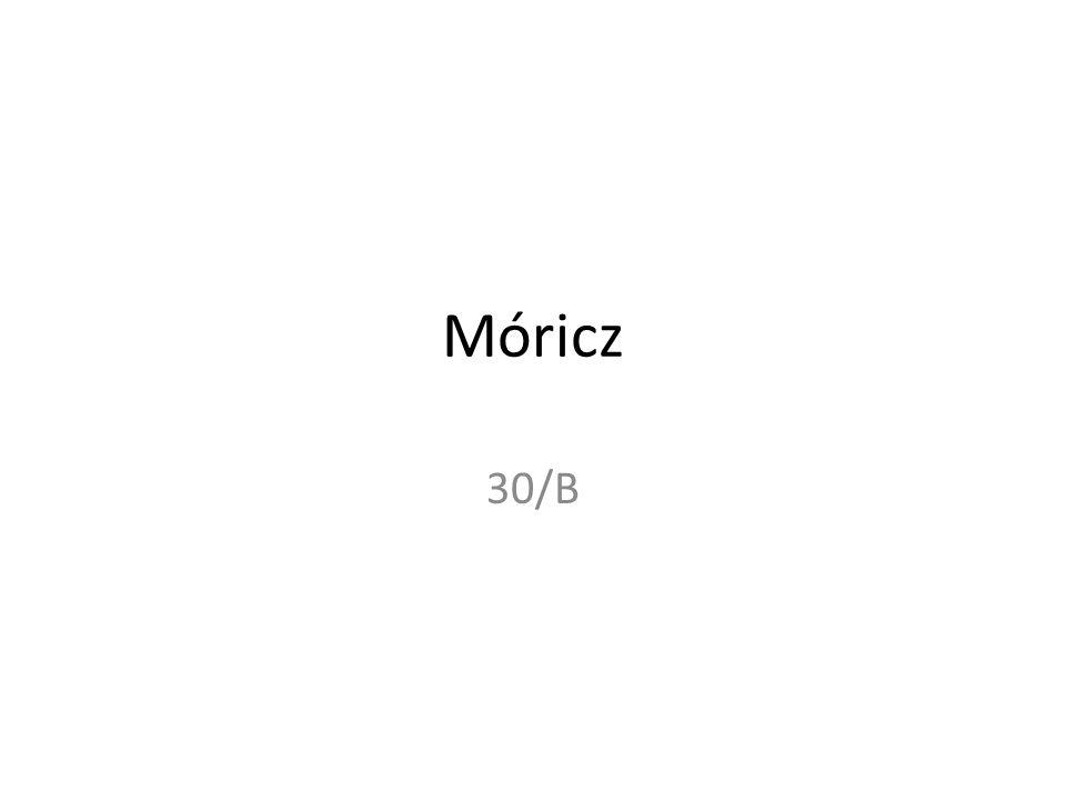 Melyik Móricz-regény utal a válságévek nyomorára?