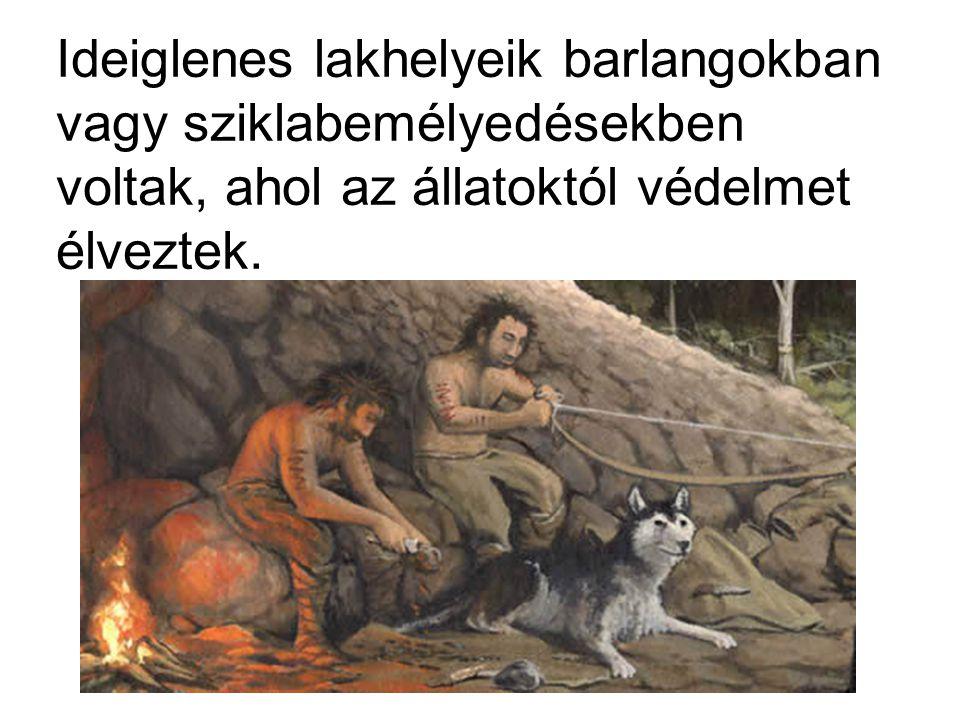 Ideiglenes lakhelyeik barlangokban vagy sziklabemélyedésekben voltak, ahol az állatoktól védelmet élveztek.