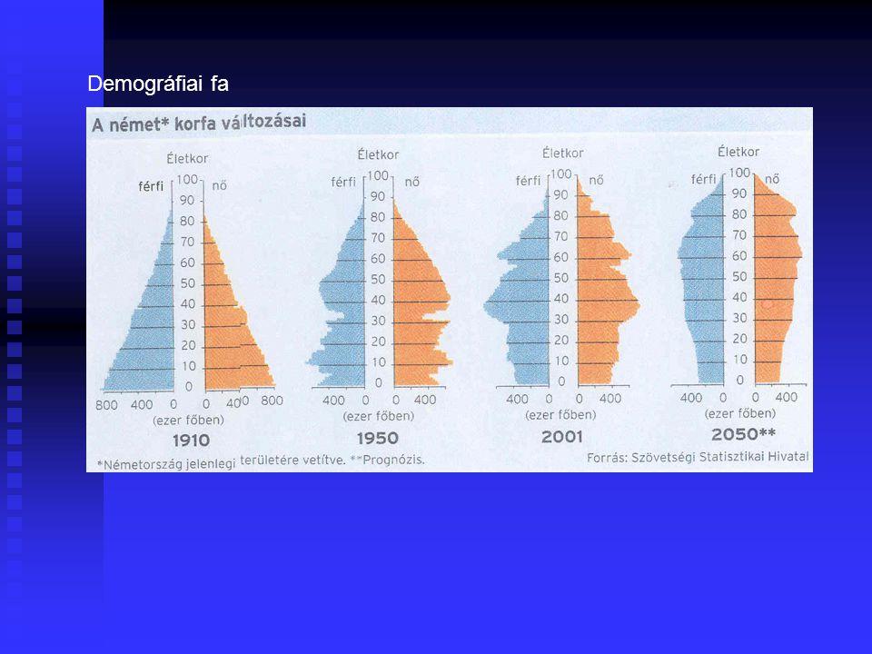Demográfiai tényezők 2.