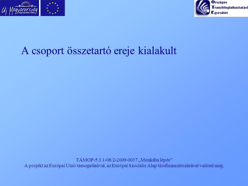 """TÁMOP-5.3.1-08/2-2009-0037 """"Munkába lépés"""" A projekt az Európai Unió támogatásával, az Európai Szociális Alap társfinanszírozásával valósul meg. A cso"""