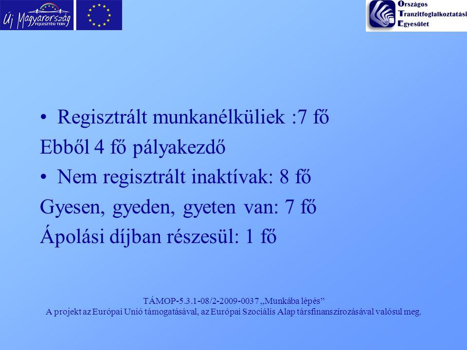 """TÁMOP-5.3.1-08/2-2009-0037 """"Munkába lépés"""" A projekt az Európai Unió támogatásával, az Európai Szociális Alap társfinanszírozásával valósul meg. Regis"""