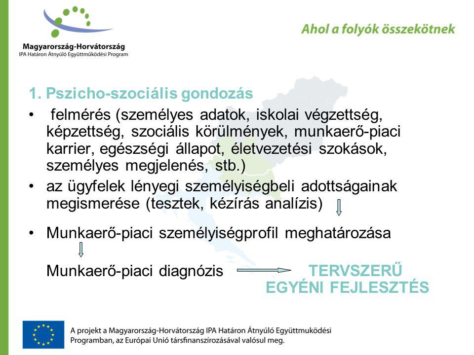 1. Pszicho-szociális gondozás felmérés (személyes adatok, iskolai végzettség, képzettség, szociális körülmények, munkaerő-piaci karrier, egészségi áll