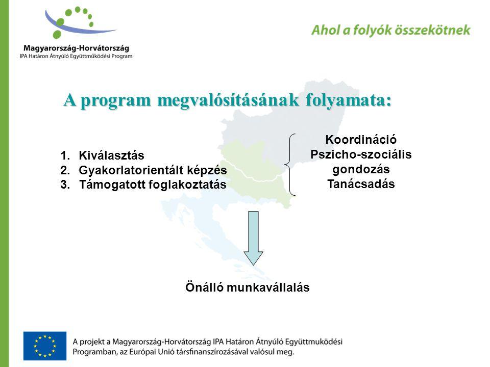 A program megvalósításának folyamata: 1.Kiválasztás 2.Gyakorlatorientált képzés 3.Támogatott foglakoztatás Önálló munkavállalás Koordináció Pszicho-szociális gondozás Tanácsadás