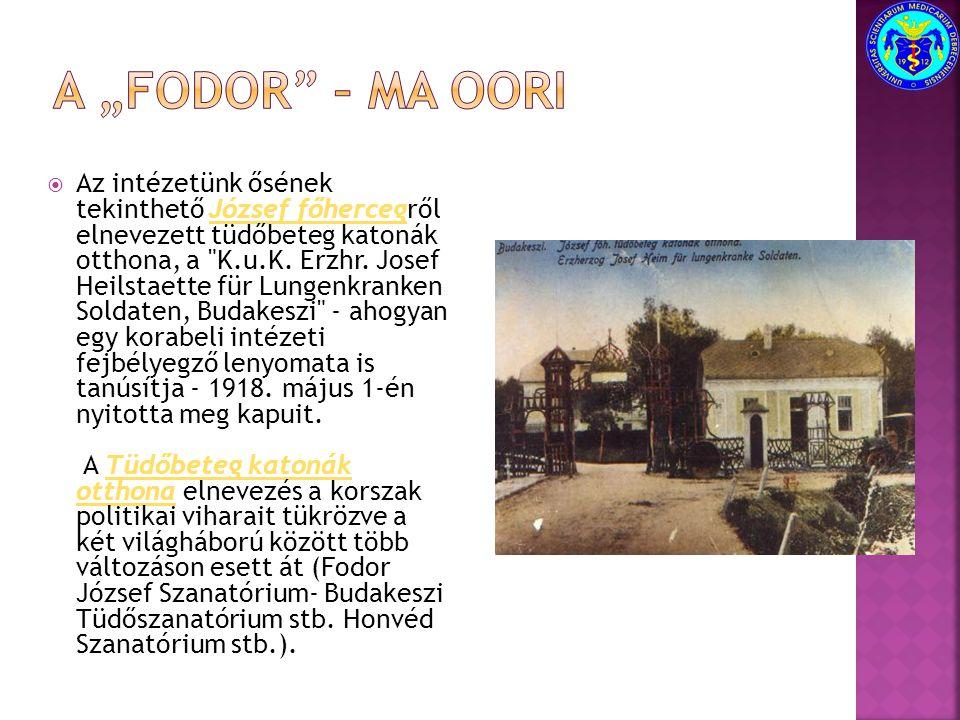  Az intézetünk ősének tekinthető József főhercegről elnevezett tüdőbeteg katonák otthona, a