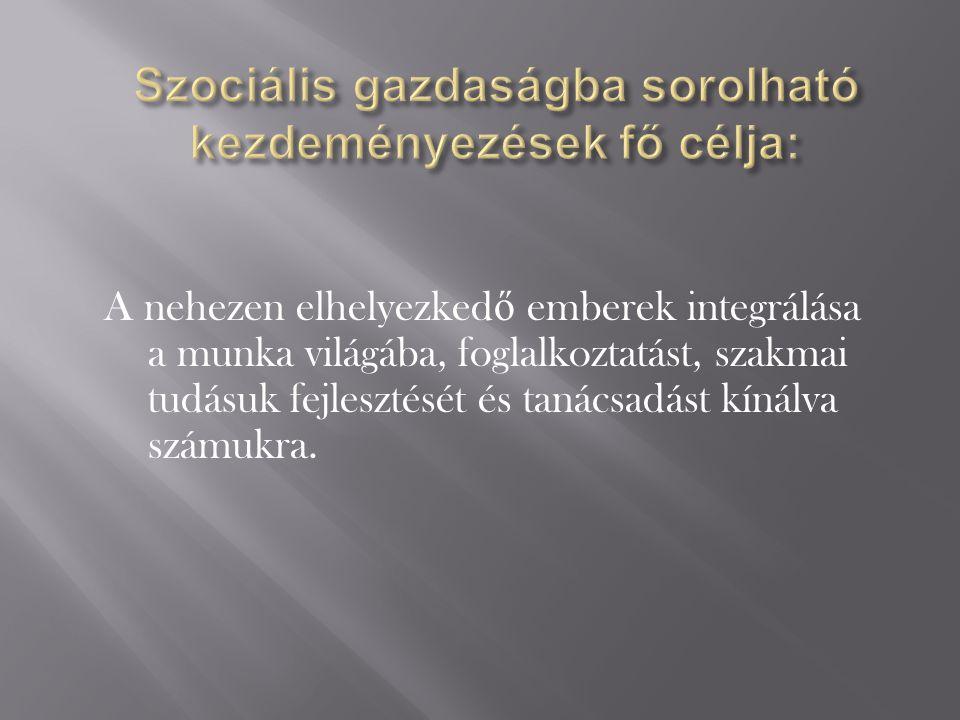 Volkán Roland Elnök Csengersimáért Új Esély Szociális Szövetkezet