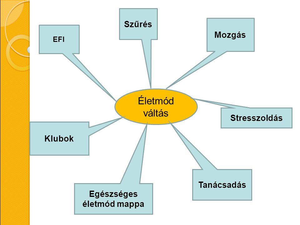 Életmód váltás EFI Szűrés Mozgás Stresszoldás Tanácsadás Klubok Egészséges életmód mappa