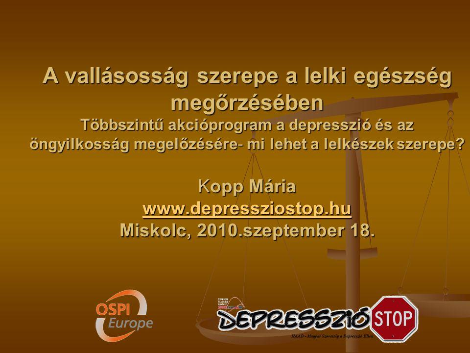 2010-ben indult a program Miskolcon, 18 hónapig tart Miért Miskolc.