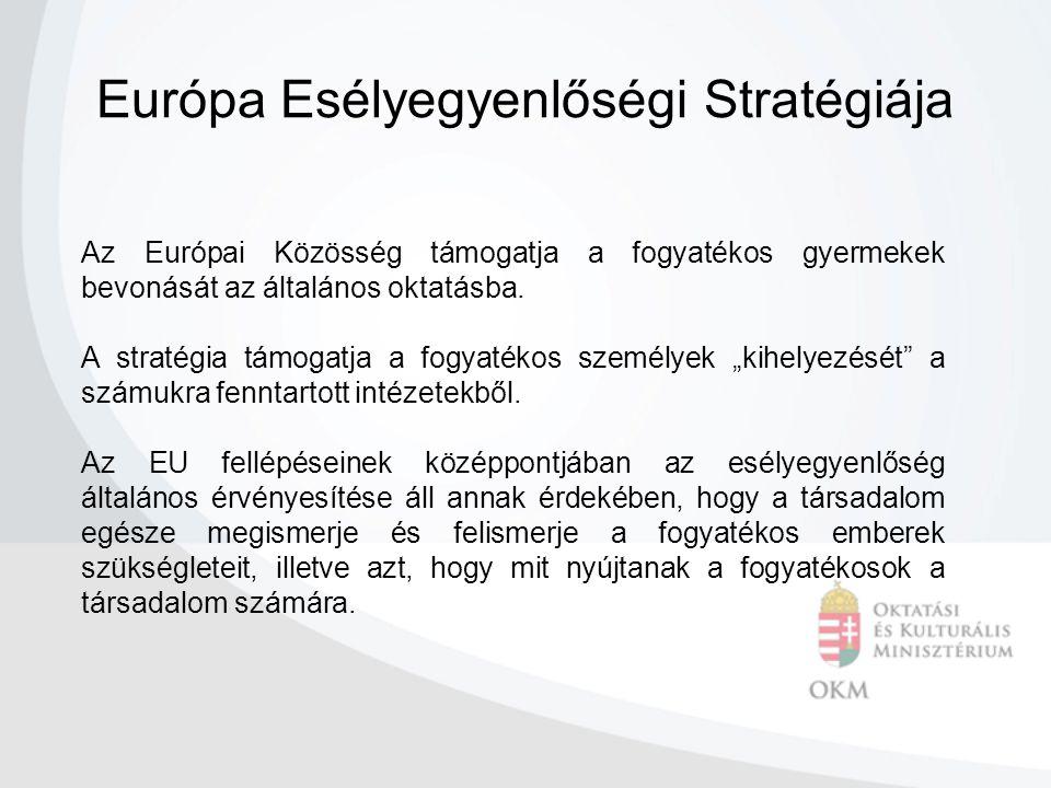 Az Európai Közösség támogatja a fogyatékos gyermekek bevonását az általános oktatásba.