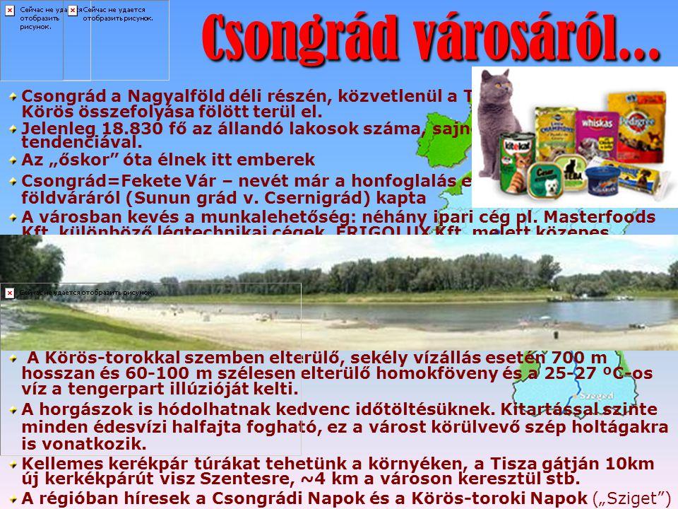 Csongrád városáról... Csongrád városáról... Csongrád a Nagyalföld déli részén, közvetlenül a Tisza és a Hármas- Körös összefolyása fölött terül el. Je
