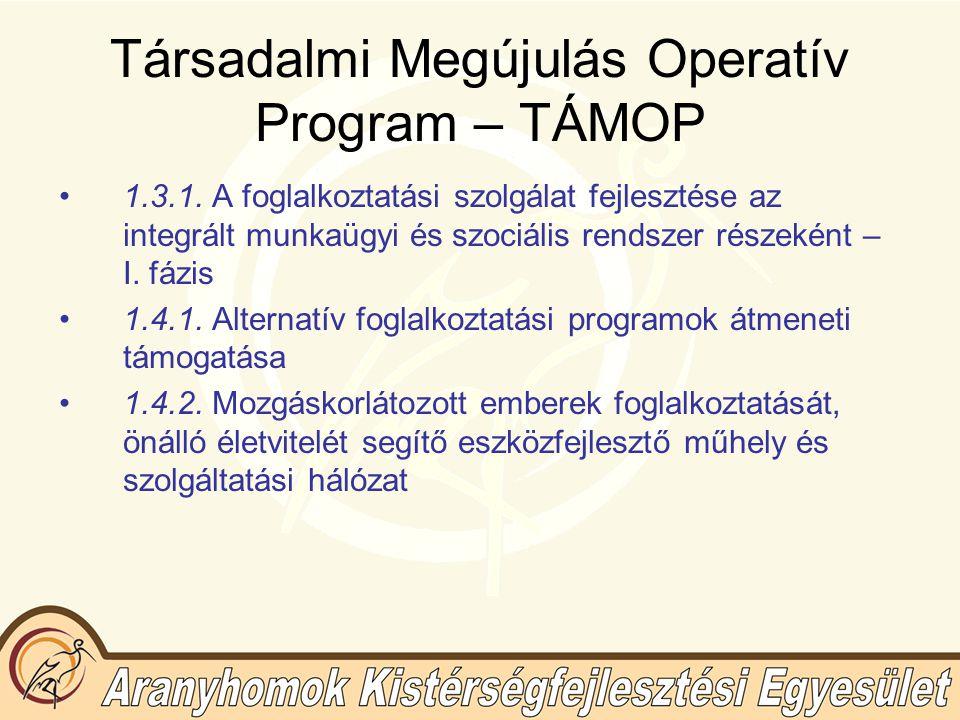 Társadalmi Megújulás Operatív Program – TÁMOP 2.prioritás: Az alkalmazkodóképesség javítása 2.1.
