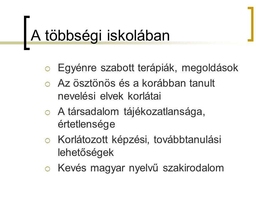 A többségi iskolában  Egyénre szabott terápiák, megoldások  Az ösztönös és a korábban tanult nevelési elvek korlátai  A társadalom tájékozatlansága, értetlensége  Korlátozott képzési, továbbtanulási lehetőségek  Kevés magyar nyelvű szakirodalom