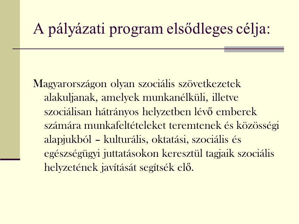 A pályázati program elsődleges célja: Magyarországon olyan szociális szövetkezetek alakuljanak, amelyek munkanélküli, illetve szociálisan hátrányos he
