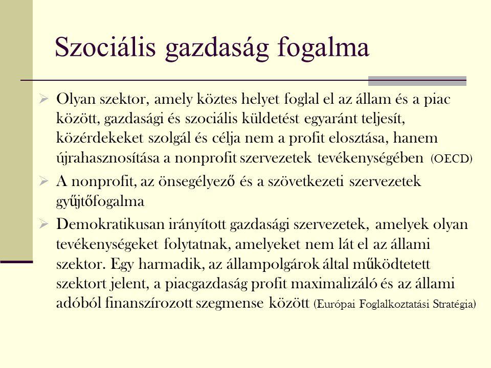 Szociális gazdaság fogalma  Olyan szektor, amely köztes helyet foglal el az állam és a piac között, gazdasági és szociális küldetést egyaránt teljesí
