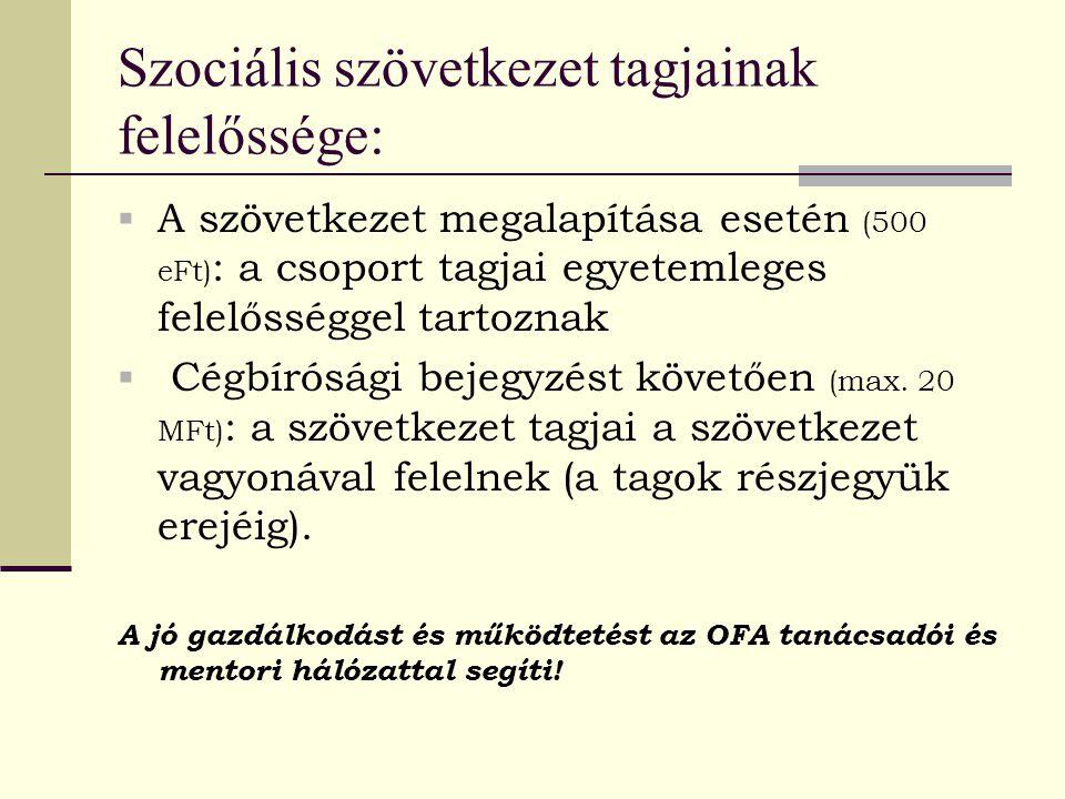 Szociális szövetkezet tagjainak felelőssége:  A szövetkezet megalapítása esetén (500 eFt) : a csoport tagjai egyetemleges felelősséggel tartoznak  C
