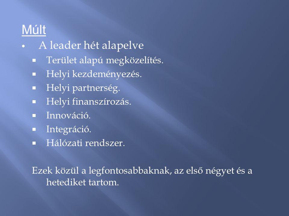Múlt  A leader hét alapelve  Terület alapú megközelítés.