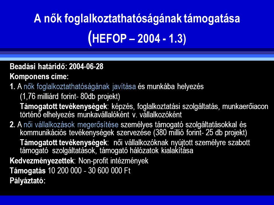 A nők foglalkoztathatóságának támogatása ( HEFOP – 2004 - 1.3) Beadási határidő: 2004-06-28 Komponens címe: 1. A nők foglalkoztathatóságának javítása