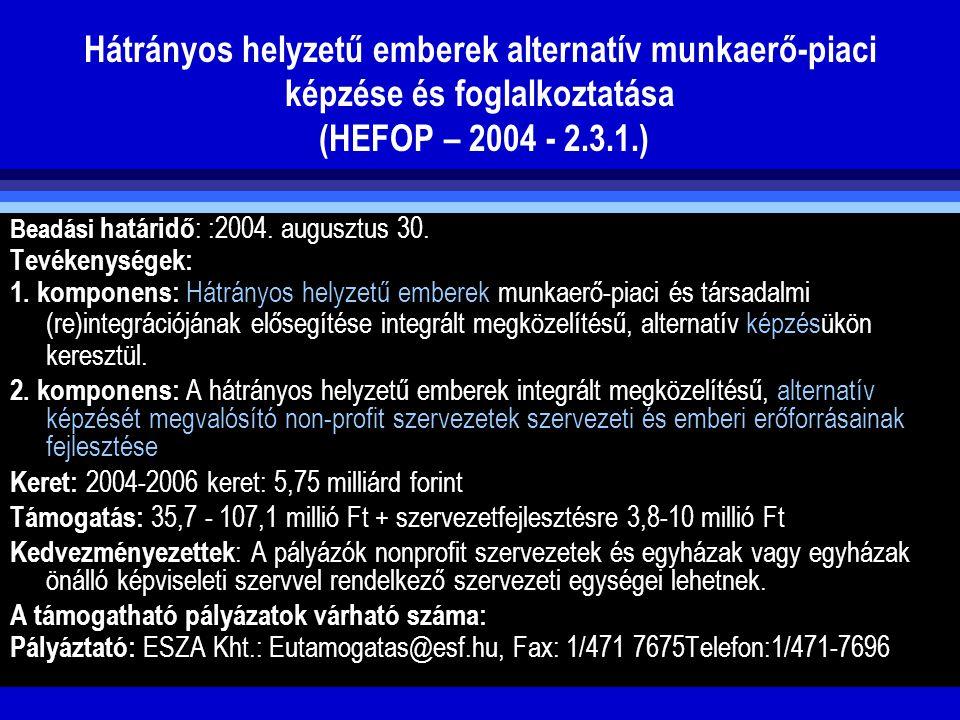 Hátrányos helyzetű emberek alternatív munkaerő-piaci képzése és foglalkoztatása (HEFOP – 2004 - 2.3.1.) Beadási határidő : :2004. augusztus 30. Tevéke