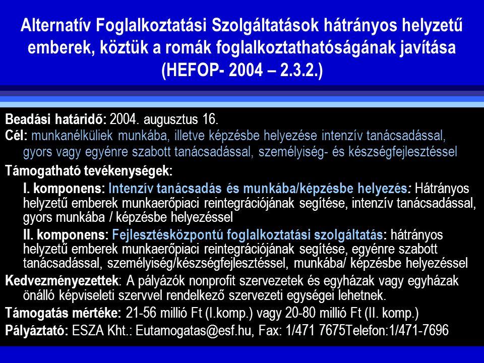 Alternatív Foglalkoztatási Szolgáltatások hátrányos helyzetű emberek, köztük a romák foglalkoztathatóságának javítása (HEFOP- 2004 – 2.3.2.) Beadási h