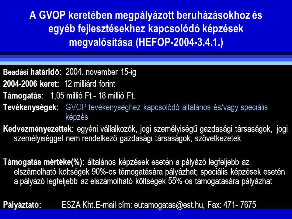 A GVOP keretében megpályázott beruházásokhoz és egyéb fejlesztésekhez kapcsolódó képzések megvalósítása (HEFOP-2004-3.4.1.) Beadási határidő: 2004. no