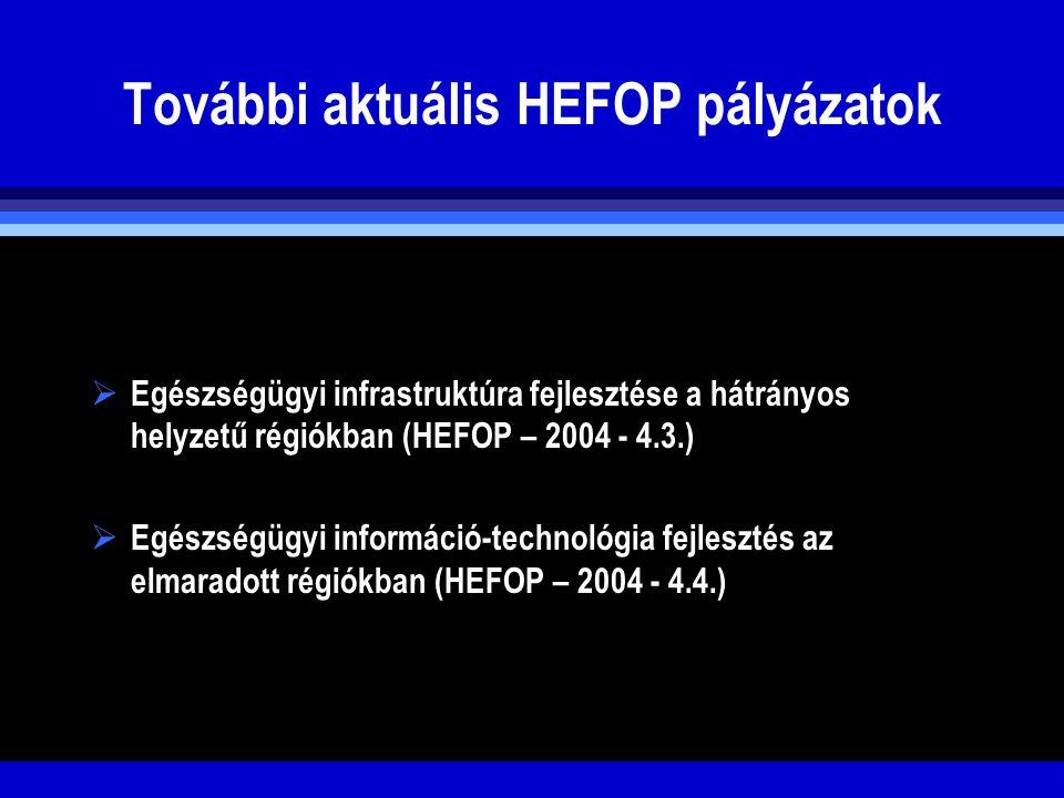 További aktuális HEFOP pályázatok  Egészségügyi infrastruktúra fejlesztése a hátrányos helyzetű régiókban (HEFOP – 2004 - 4.3.)  Egészségügyi inform