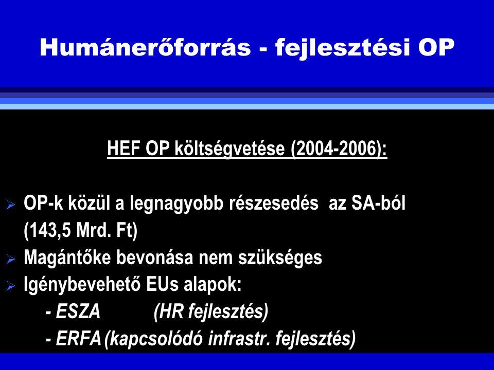 Humánerőforrás - fejlesztési OP HEF OP költségvetése (2004-2006):  OP-k közül a legnagyobb részesedés az SA-ból (143,5 Mrd. Ft)  Magántőke bevonása