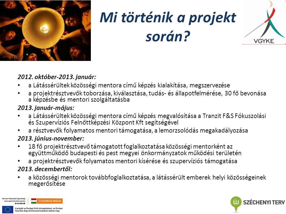 Mi történik a projekt során? 2012. október-2013. január: a Látássérültek közösségi mentora című képzés kialakítása, megszervezése a projektrésztvevők