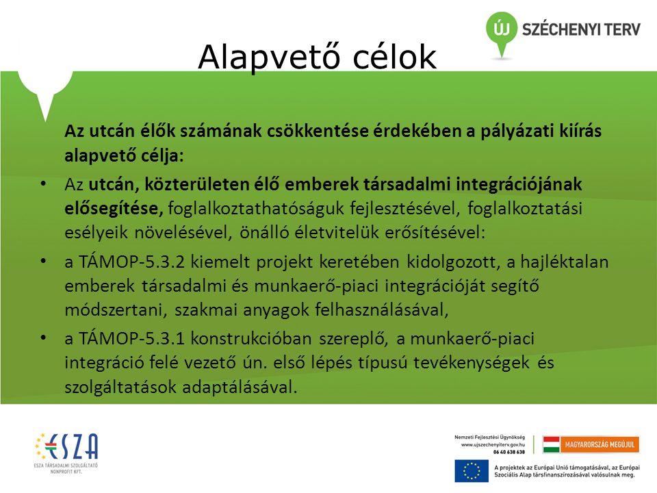 Alapvető célok Az utcán élők számának csökkentése érdekében a pályázati kiírás alapvető célja: Az utcán, közterületen élő emberek társadalmi integrációjának elősegítése, foglalkoztathatóságuk fejlesztésével, foglalkoztatási esélyeik növelésével, önálló életvitelük erősítésével: a TÁMOP-5.3.2 kiemelt projekt keretében kidolgozott, a hajléktalan emberek társadalmi és munkaerő-piaci integrációját segítő módszertani, szakmai anyagok felhasználásával, a TÁMOP-5.3.1 konstrukcióban szereplő, a munkaerő-piaci integráció felé vezető ún.