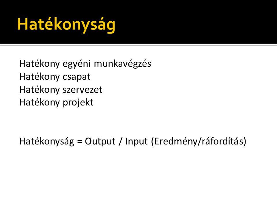 Hatékony egyéni munkavégzés Hatékony csapat Hatékony szervezet Hatékony projekt Hatékonyság = Output / Input (Eredmény/ráfordítás)