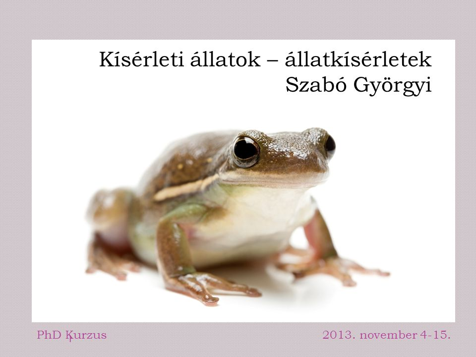 Kísérleti állatok – állatkísérletek Szabó Györgyi PhD Kurzus2013. november 4-15. 1