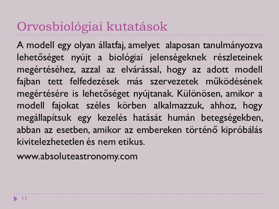 Orvosbiológiai kutatások A modell egy olyan állatfaj, amelyet alaposan tanulmányozva lehetőséget nyújt a biológiai jelenségeknek részleteinek megértés
