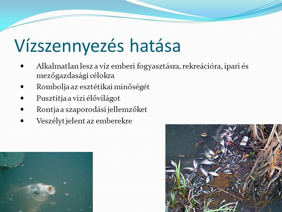 Vízszennyezés hatása Alkalmatlan lesz a víz emberi fogyasztásra, rekreációra, ipari és mezőgazdasági célokra Rombolja az esztétikai minőségét Pusztítja a vízi élővilágot Rontja a szaporodási jellemzőket Veszélyt jelent az emberekre