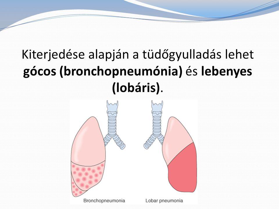 A kórokozók általában belégzés útján jutnak be az alsóbb légutakba, ahol megtelepedve szaporodni kezdenek, gyulladásos folyamatot indítanak be.
