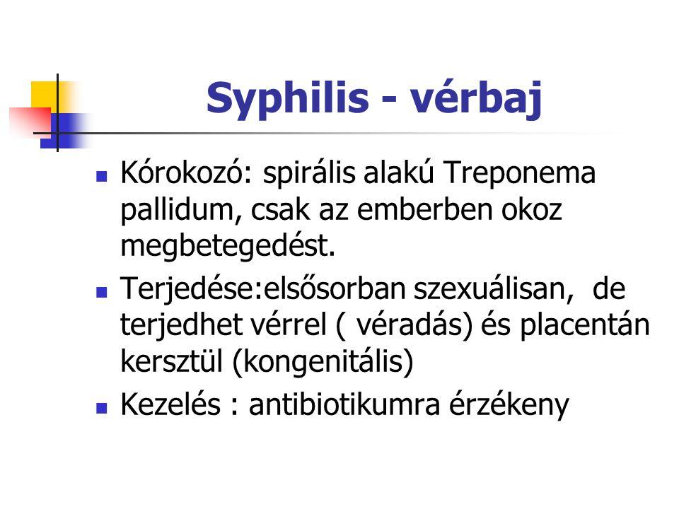 Syphilis - vérbaj Kórokozó: spirális alakú Treponema pallidum, csak az emberben okoz megbetegedést. Terjedése:elsősorban szexuálisan, de terjedhet vér