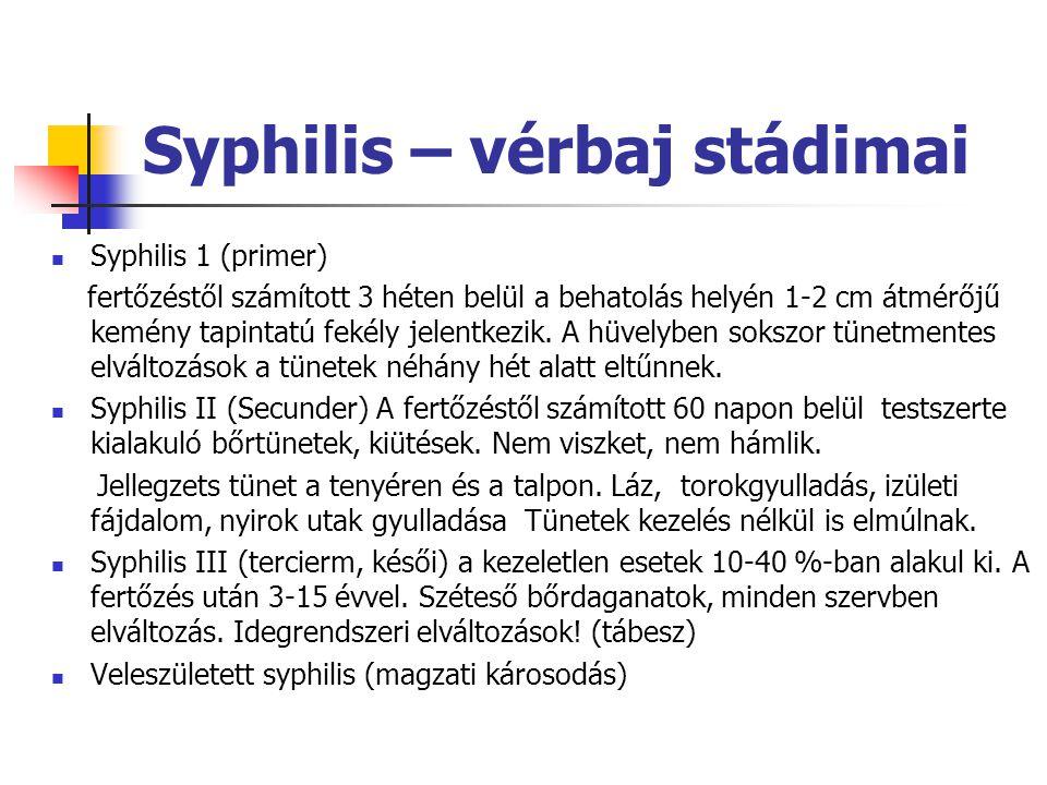 Syphilis – vérbaj stádimai Syphilis 1 (primer) fertőzéstől számított 3 héten belül a behatolás helyén 1-2 cm átmérőjű kemény tapintatú fekély jelentke