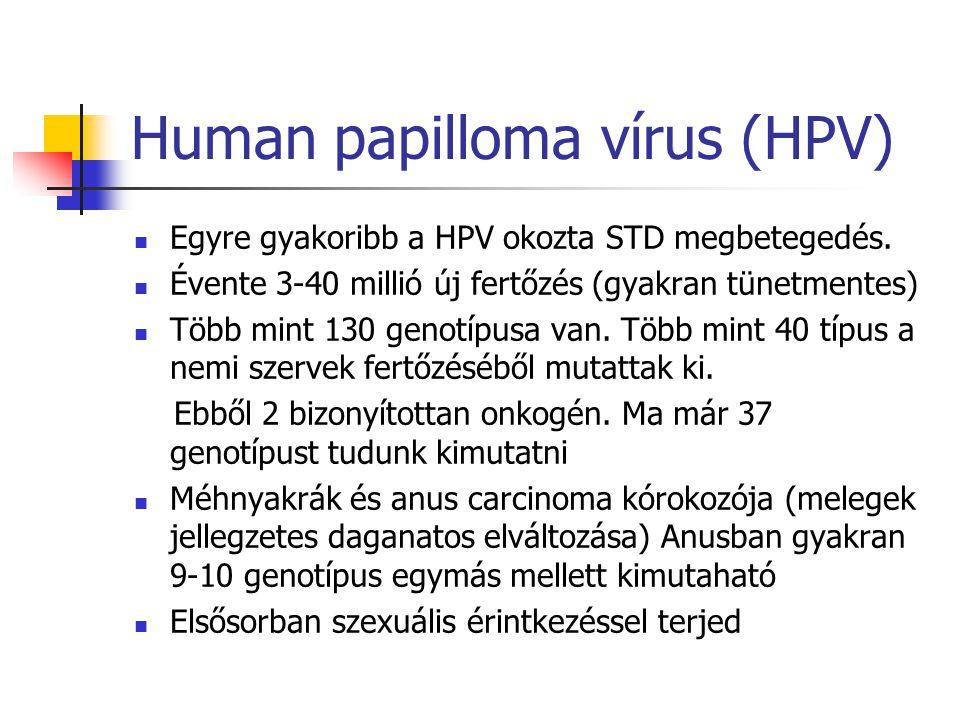 Human papilloma vírus (HPV) Egyre gyakoribb a HPV okozta STD megbetegedés. Évente 3-40 millió új fertőzés (gyakran tünetmentes) Több mint 130 genotípu