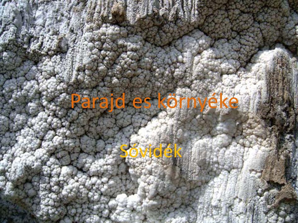 PARAJD Parajd első írásos említése 1564-ben, a Királyi Könyvekben található.