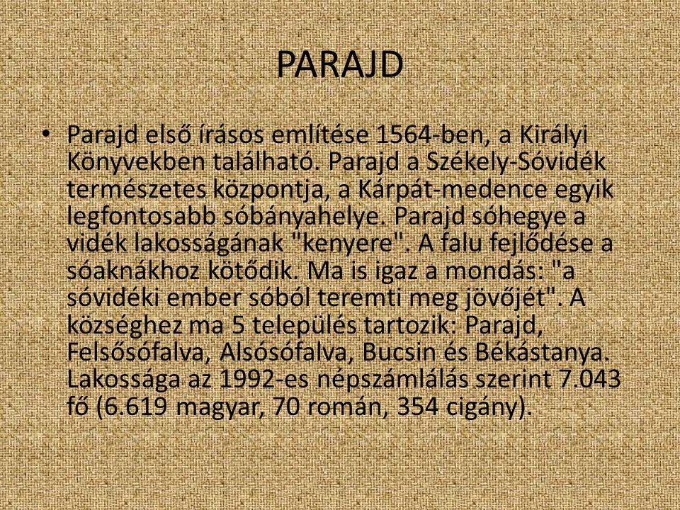 SZOVÁTA Szováta első említésének időpontja 1578 (Fekete Á.-Józsa A.-Szőke A.- Zepeczaner J.-1998.).