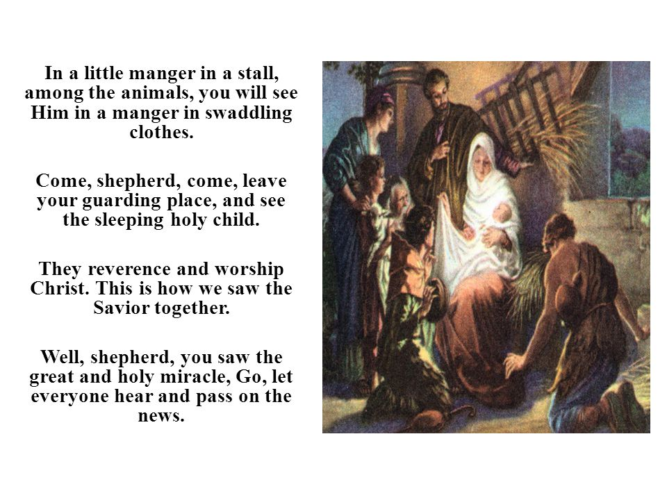 In a little manger in a stall, among the animals, you will see Him in a manger in swaddling clothes. Come, shepherd, come, leave your guarding place,