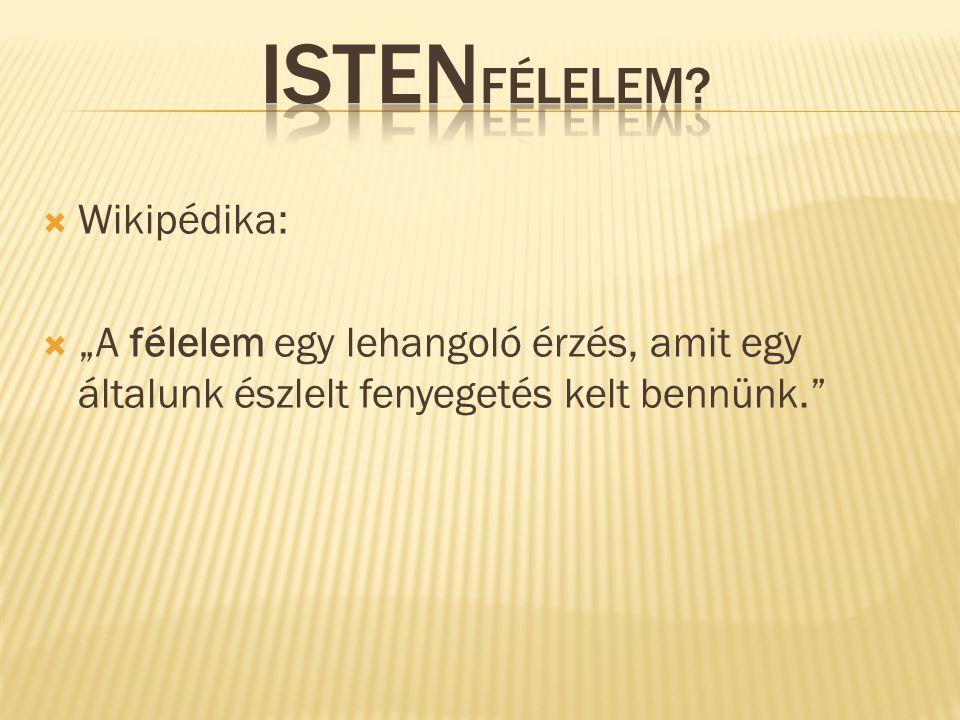 """Ha a görög nyelvben egyáltalán van egy szó a vallásra, akkor ez a szó az """"euszebeia ."""