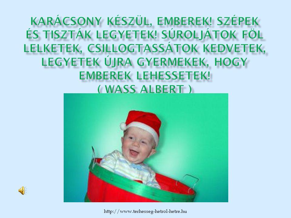 http://www.terhesseg-hetrol-hetre.hu
