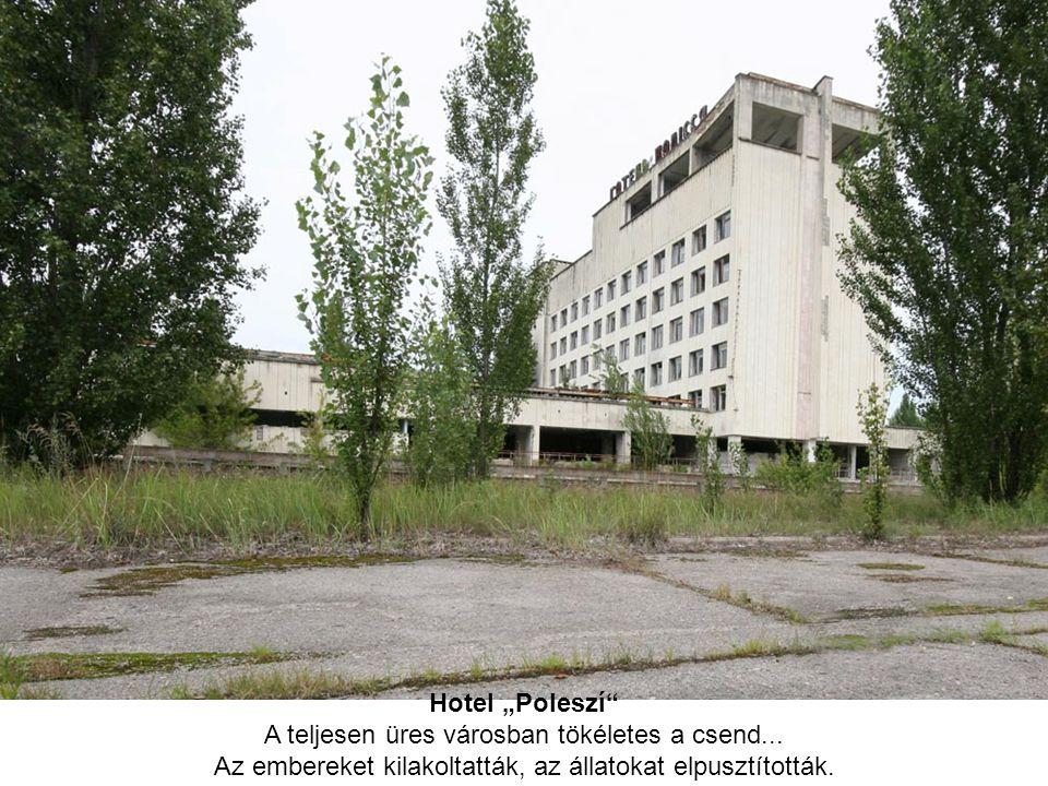 """Hotel """"Poleszí"""" A teljesen üres városban tökéletes a csend... Az embereket kilakoltatták, az állatokat elpusztították."""